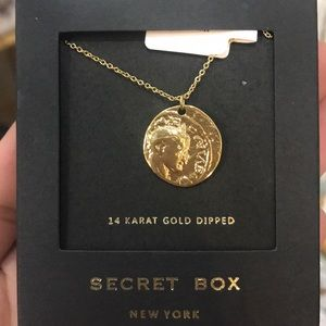 14 karat gold dipped coin necklace